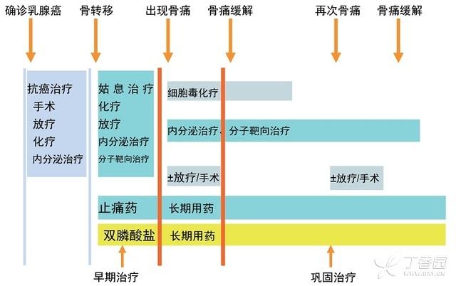中国乳腺癌诊治指南(2015 版) 中国 乳腺癌 指南 第10张